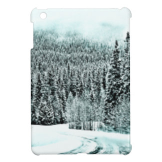 Winter Road Case For The iPad Mini