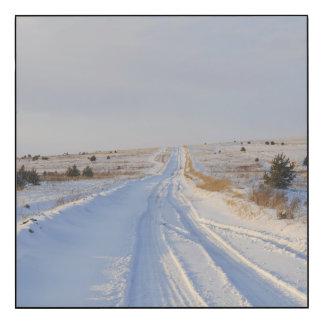 Winter Road in the Fields