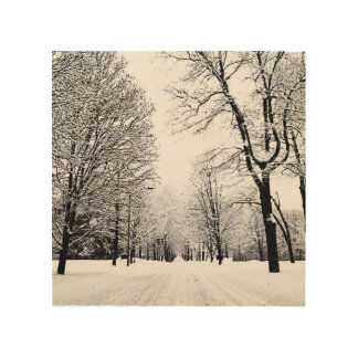 Winter road wood canvases