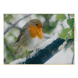 Winter Robin Card