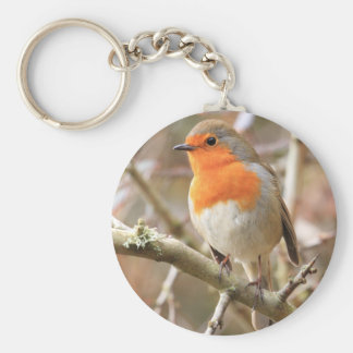 Winter Robin Redbreast Key Ring