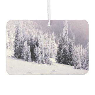 Winter scene airfreshener car air freshener