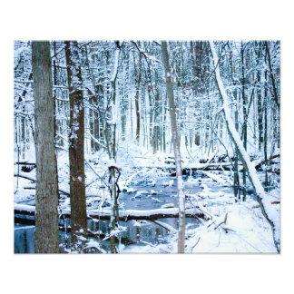 winter scene photograph