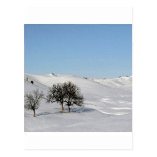 Winter Scene Snow Scape Postcard