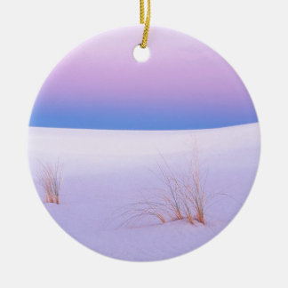 Winter Scene Tranquility Sands New Mexico Ceramic Ornament
