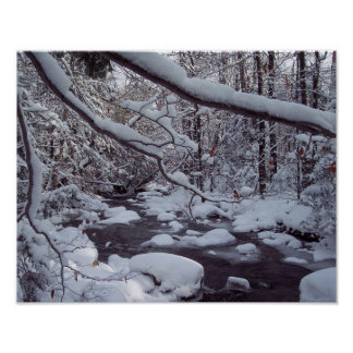 Winter Scenery On a Brook After A Snow Storm Poster