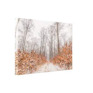 Winter scenery with snow on orange leaves canvas print