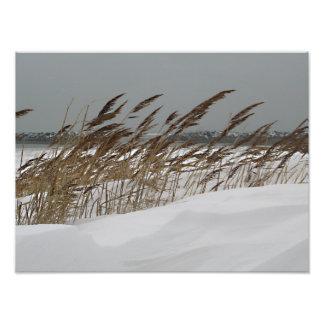 Winter Seashore Photographic Print