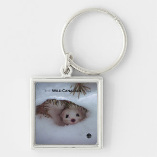 Winter - Short-Tailed Weasel Key Ring