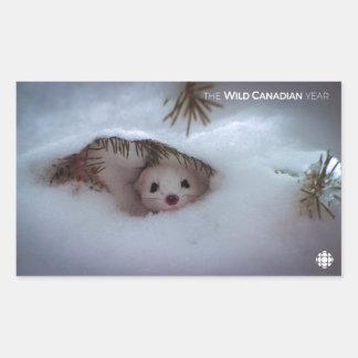 Winter - Short-Tailed Weasel Rectangular Sticker