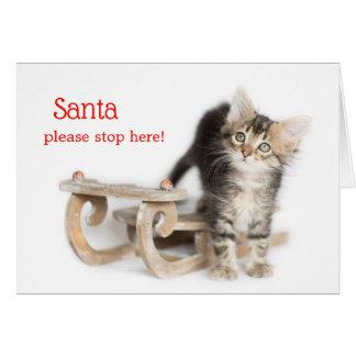 Winter Sleigh Denver Kitten Card