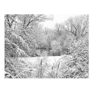 Winter Snow At Huron River Postcard