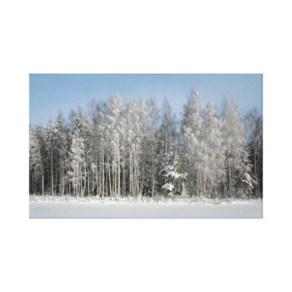 Winter - Snow Beach Stretched Canvas Prints