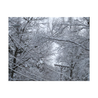 Winter snow, Boston, MA 14x11 Canvas print