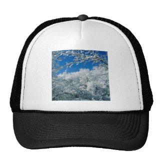Winter Snow Covered Trees Warner Nashville Mesh Hats