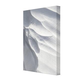 Winter Snow Drift Sculpture Stretched Canvas Print