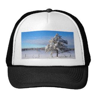 Winter Snow St Joseph Island Cap