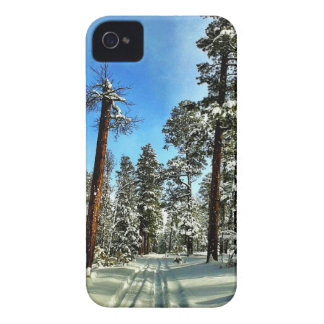 Winter Snow Trails in the Woods Trees Forest Gifts iPhone 4 Cases