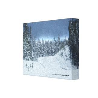 Winter Snow Wrapped Canvas Canvas Prints