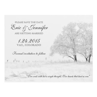 Winter Snowfall Classic Wedding Save the Date Postcard