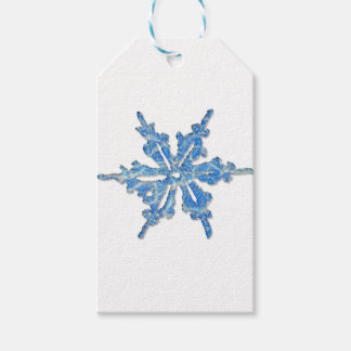 Winter Snowflake Design for Xmas 3
