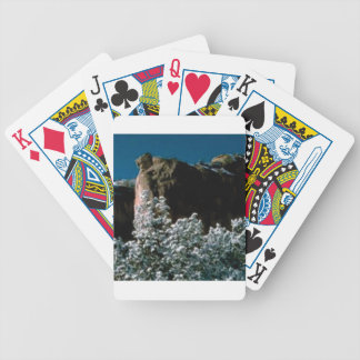 winter snows in the desert bicycle playing cards