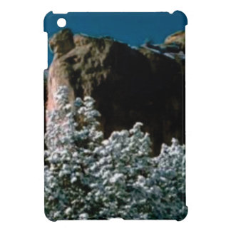 winter snows in the desert iPad mini covers