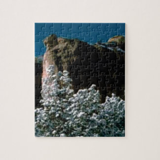 winter snows in the desert jigsaw puzzle