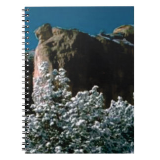 winter snows in the desert notebook
