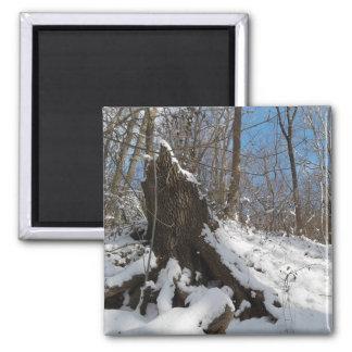 winter snowy log magnet