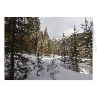 Winter Snowy Mountain Scene in Montana Card