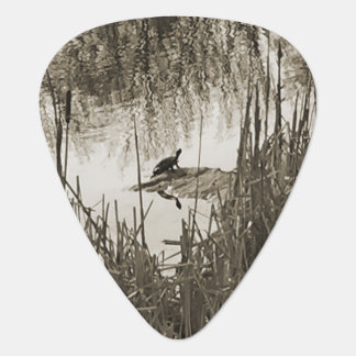 Winter Solstice Guitar Pick
