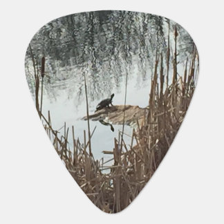 Winter Solstice Plectrum
