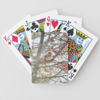 Winter Squirrel In Berry Tree Bicycle Playing Cards