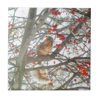 Winter Squirrel In Berry Tree Ceramic Tile