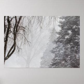 Winter storm, Ohio. Poster