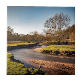 Winter Stroll Along The River Bollin Tile