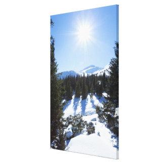 Winter sun 5 canvas print