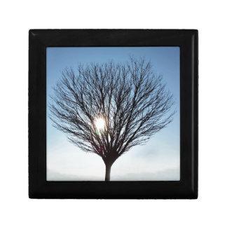 winter sun gift box
