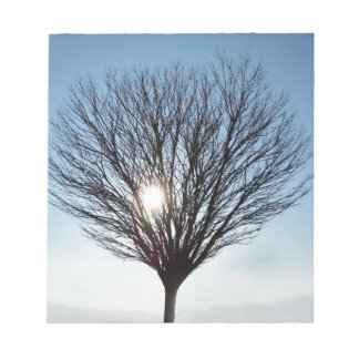 winter sun notepad