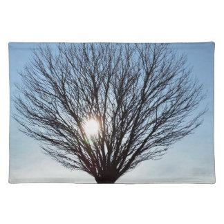 winter sun placemat