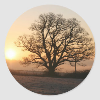 Winter Sunrise Classic Round Sticker