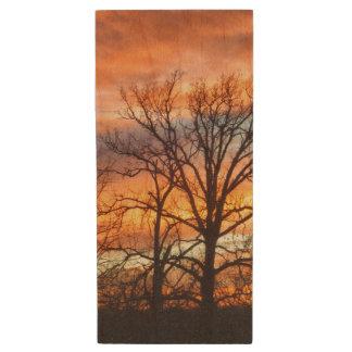Winter Sunset 1 Wood USB 2.0 Flash Drive