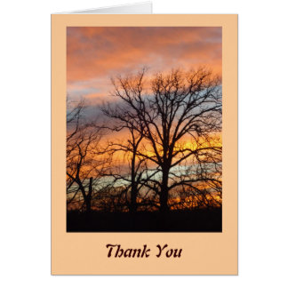 Winter Sunset 1 Thank You Cards