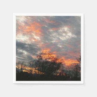 Winter Sunset Nature Landscape Photography Paper Serviettes