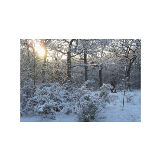 Winter Sunset Woodland Snow Canvas Art Canvas Print
