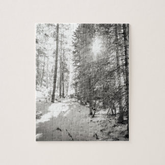 Winter Sunshine Forest Shades Of Gray Jigsaw Puzzle