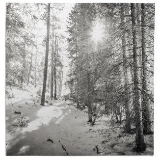Winter Sunshine Forest Shades Of Gray Napkin