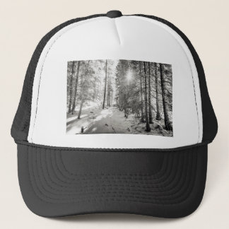 Winter Sunshine Forest Shades Of Gray Trucker Hat