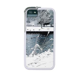 Winter Swim iPhone 5/5S Cover